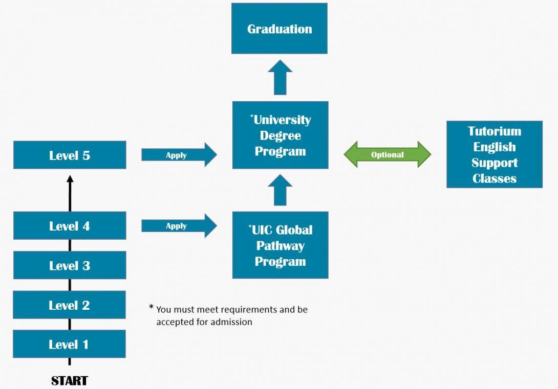 Pathway to university diagram