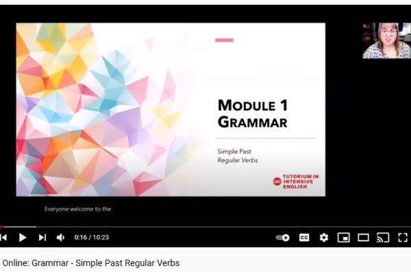 Opening screen of Module 1 grammar video